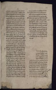 Lugnasad in Cormac's Glossary, UCD-OFM MS A 12 p. 23 (https://www.isos.dias.ie/)
