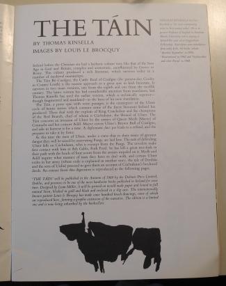 'The Táin'