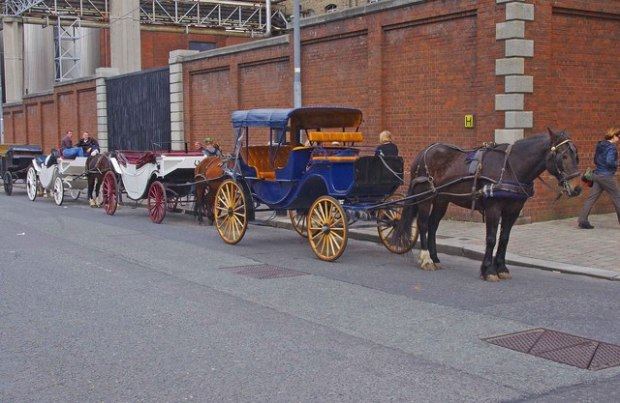 Contemporary horse-drawn carriages